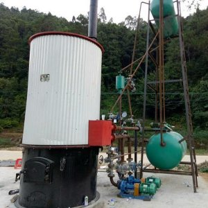 30万大卡导热油锅炉模温机安装调
